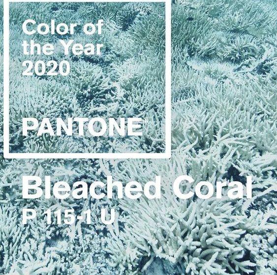 رنگ سال ۲۰۲۰ در آرایش، لباس برای خانم ها و دکوراسیون