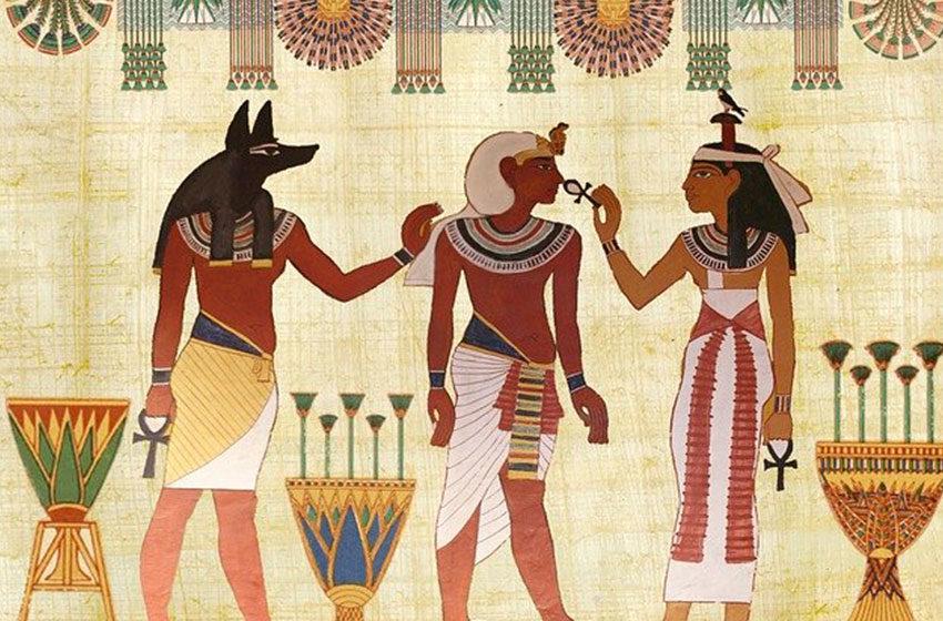 زنان مصر باستان از آلوورا چه استفاده هایی میکردند؟